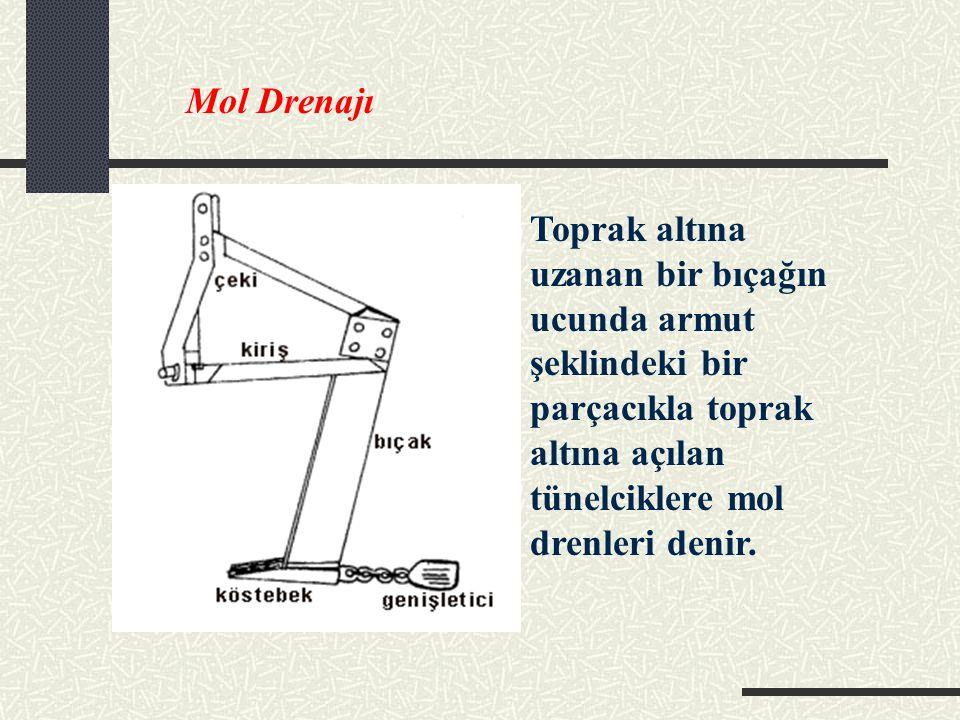 Mol Drenajı Toprak altına uzanan bir bıçağın ucunda armut şeklindeki bir parçacıkla toprak altına açılan tünelciklere mol drenleri denir.