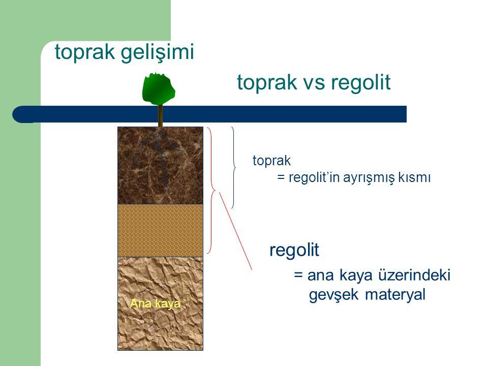 toprak gelişimi toprak vs regolit regolit = ana kaya üzerindeki gevşek materyal bedrock Ana kaya toprak = regolit'in ayrışmış kısmı
