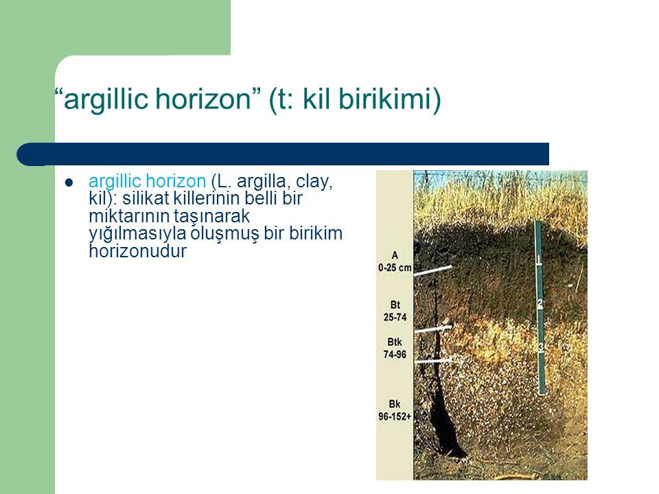 """""""argillic horizon"""" (t: kil birikimi) argillic horizon (L. argilla, clay, kil): silikat killerinin belli bir miktarının taşınarak yığılmasıyla oluşmuş"""