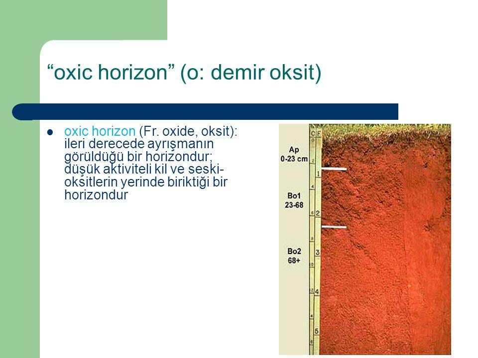 """""""oxic horizon"""" (o: demir oksit) oxic horizon (Fr. oxide, oksit): ileri derecede ayrışmanın görüldüğü bir horizondur; düşük aktiviteli kil ve seski- ok"""
