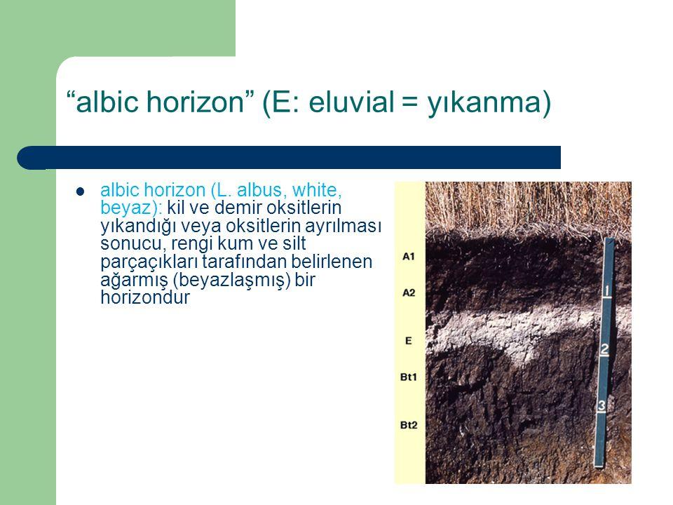 albic horizon (L. albus, white, beyaz): kil ve demir oksitlerin yıkandığı veya oksitlerin ayrılması sonucu, rengi kum ve silt parçaçıkları tarafından