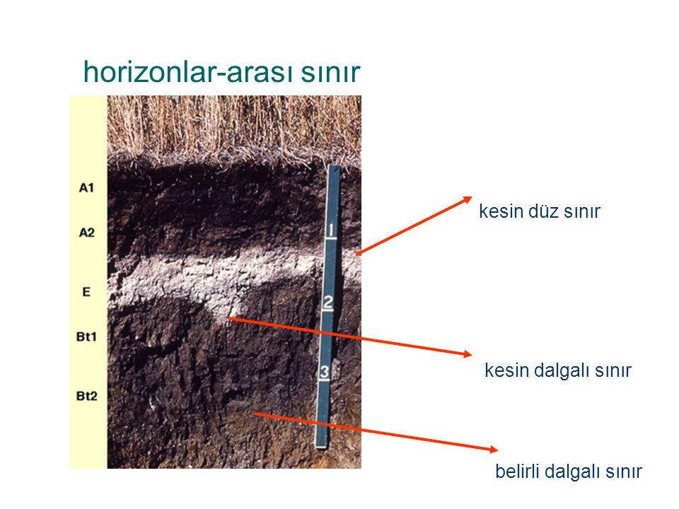 horizonlar-arası sınır kesin düz sınır kesin dalgalı sınır belirli dalgalı sınır