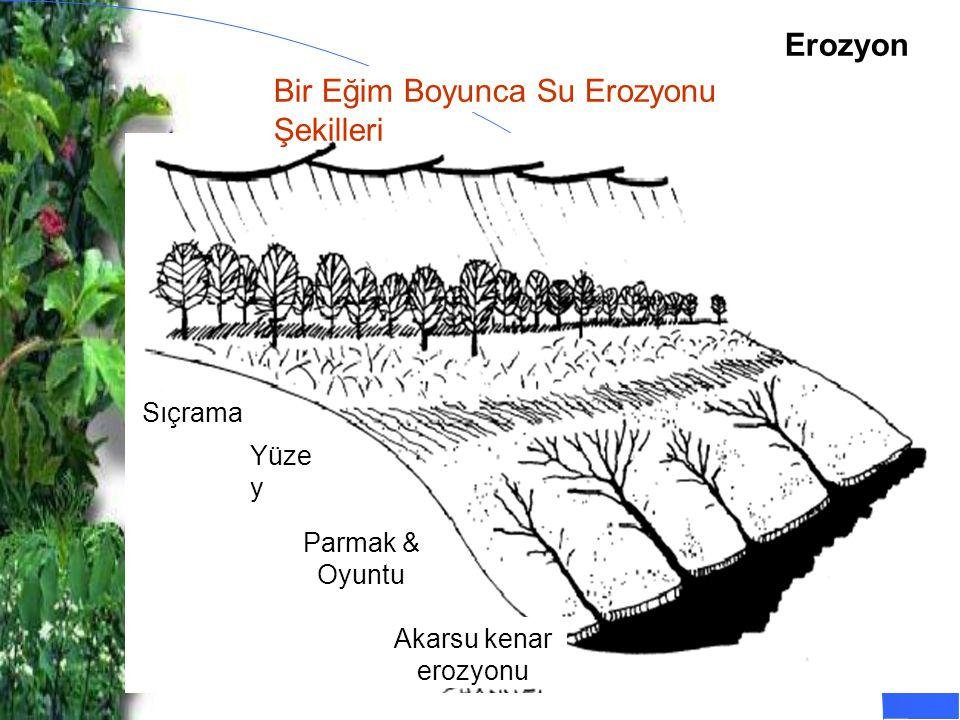 Bir Eğim Boyunca Su Erozyonu Şekilleri Sıçrama Yüze y Parmak & Oyuntu Akarsu kenar erozyonu