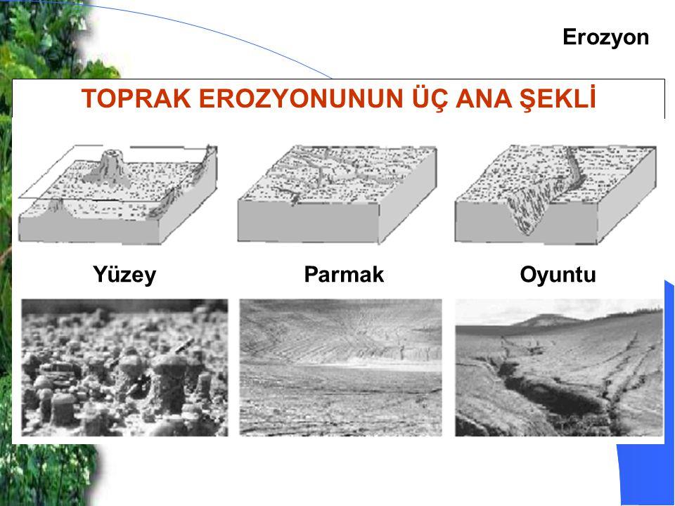 Erozyon TOPRAK EROZYONUNUN ÜÇ ANA ŞEKLİ YüzeyParmakOyuntu