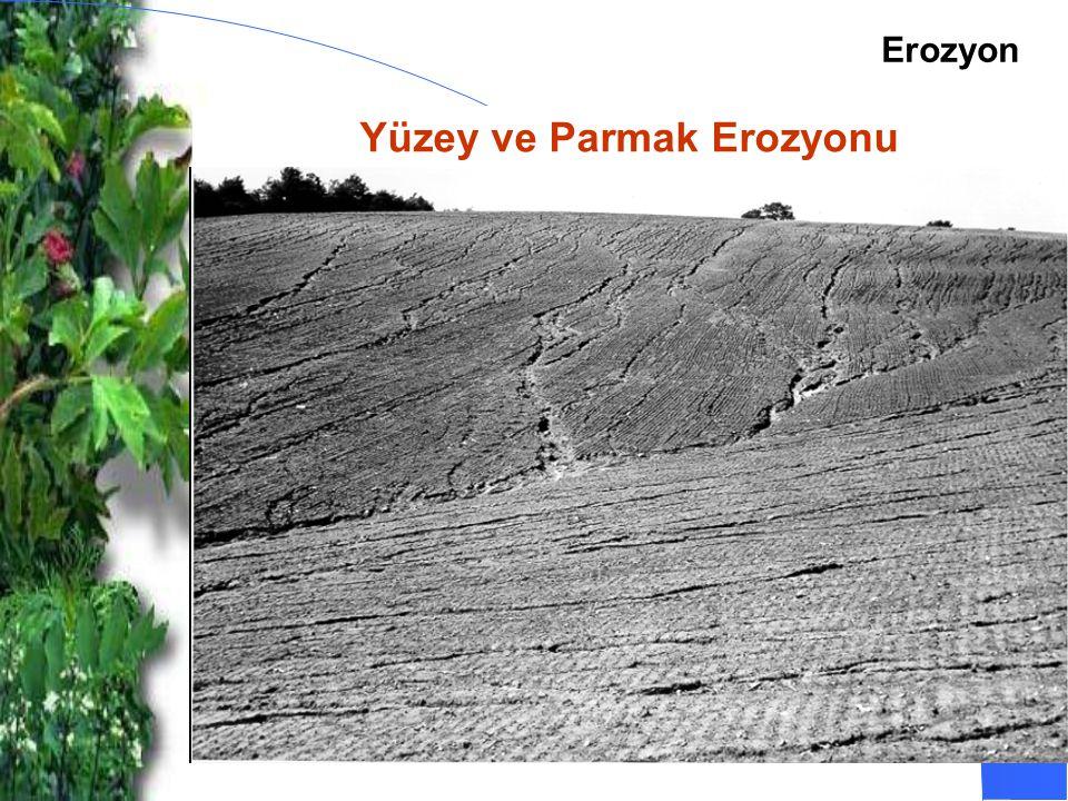 Yüzey ve Parmak Erozyonu Erozyon