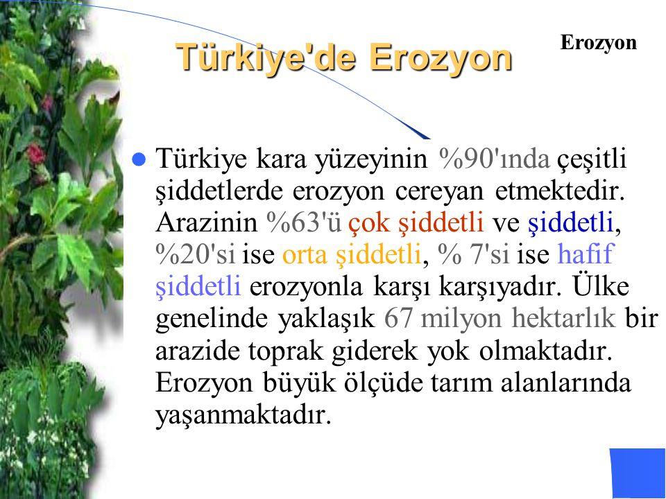 Türkiye'de Erozyon Türkiye kara yüzeyinin %90'ında çeşitli şiddetlerde erozyon cereyan etmektedir. Arazinin %63'ü çok şiddetli ve şiddetli, %20'si ise