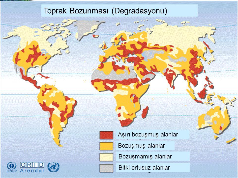 Aşırı bozuşmuş alanlar Bozuşmuş alanlar Bozuşmamış alanlar Bitki örtüsüz alanlar Toprak Bozunması (Degradasyonu)