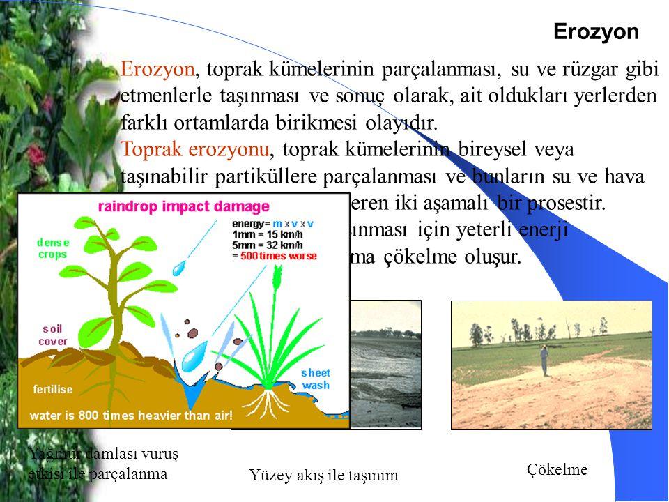 Erozyon Erozyon, toprak kümelerinin parçalanması, su ve rüzgar gibi etmenlerle taşınması ve sonuç olarak, ait oldukları yerlerden farklı ortamlarda bi