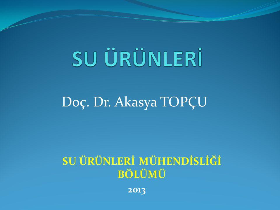 Doç. Dr. Akasya TOPÇU SU ÜRÜNLERİ MÜHENDİSLİĞİ BÖLÜMÜ 2013