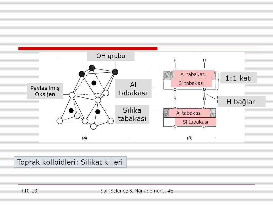 T10-13Soil Science & Management, 4E Figure 10-6 Toprak kolloidleri: Silikat killeri Paylaşılmış Oksijen OH grubu Al tabakası Silika tabakası 1:1 katı