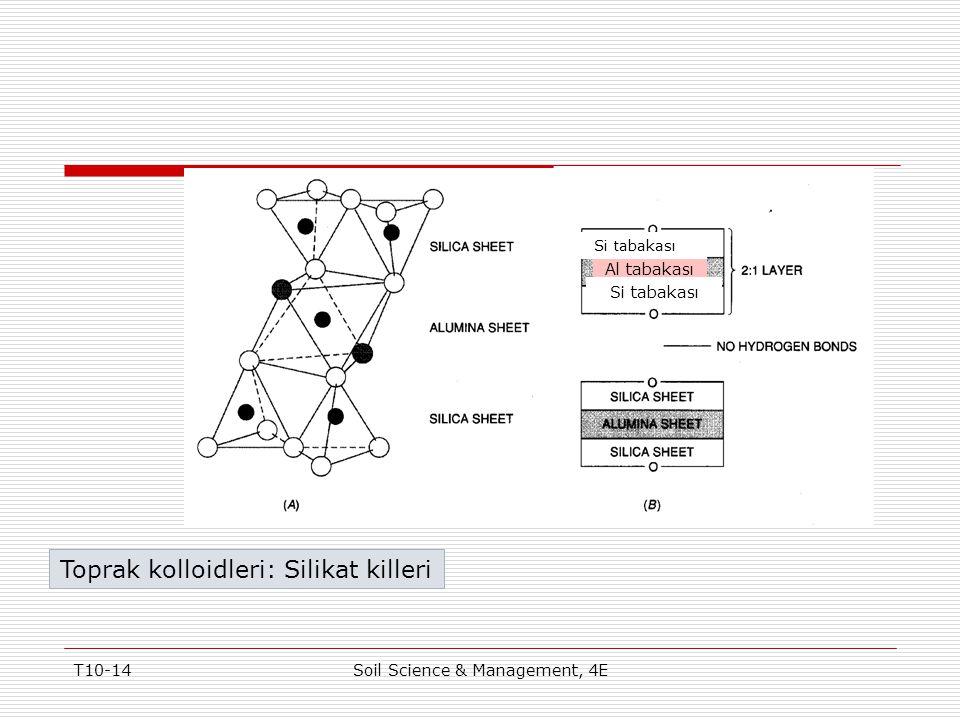 T10-14Soil Science & Management, 4E Figure 10-7 Toprak kolloidleri: Silikat killeri Al tabakası Si tabakası