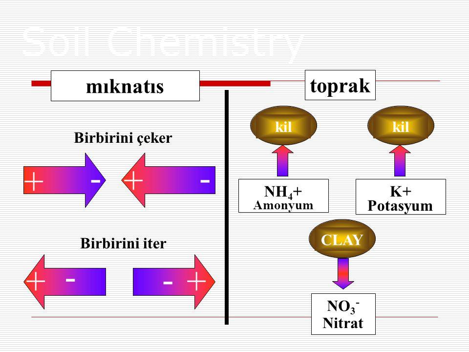 mıknatıs toprak Birbirini çeker Birbirini iter - + + - - - ++ kil NH 4 + Amonyum K+ Potasyum CLAY NO 3 - Nitrat Soil Chemistry