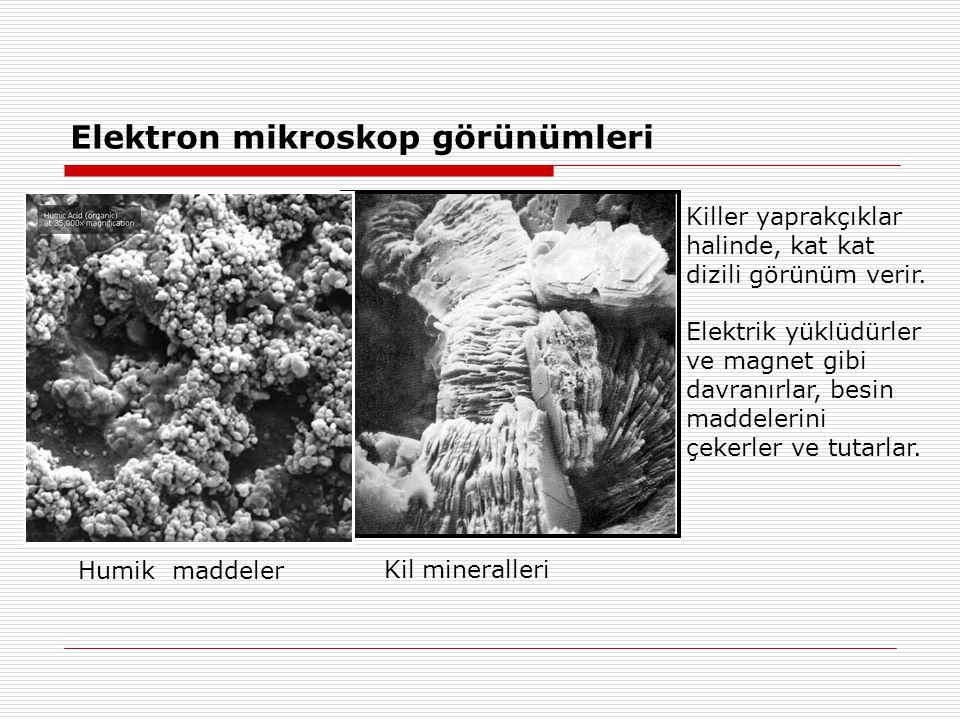 Elektron mikroskop görünümleri Killer yaprakçıklar halinde, kat kat dizili görünüm verir. Elektrik yüklüdürler ve magnet gibi davranırlar, besin madde