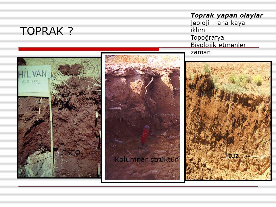 Toprak oluşumunda etken fiziksel, kimyasal ve biyolojik etmenler Aşınma- Ayrışma- Birleşme  Fiziksel Etmenler 1.Kaya ve mineralin şekil ve büyüklüğünü değiştiren aşınma – parçalanma 2.Kimyasal ve minerolojik yapı değişmez