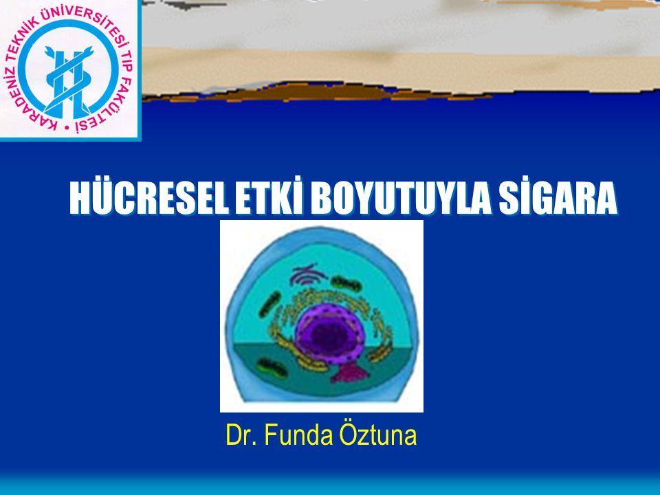 HÜCRESEL ETKİ BOYUTUYLA SİGARA Dr. Funda Öztuna