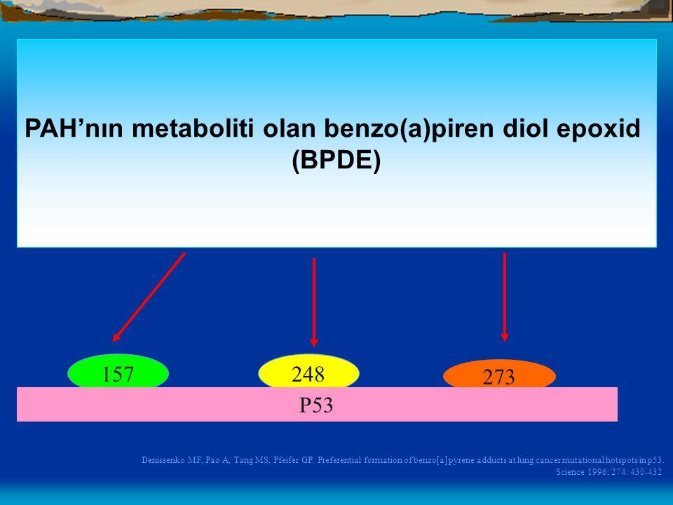 PAH'nın metaboliti olan benzo(a)piren diol epoxid (BPDE) 157248 273 P53 Denissenko MF, Pao A, Tang MS, Pfeifer GP. Preferential formation of benzo  a