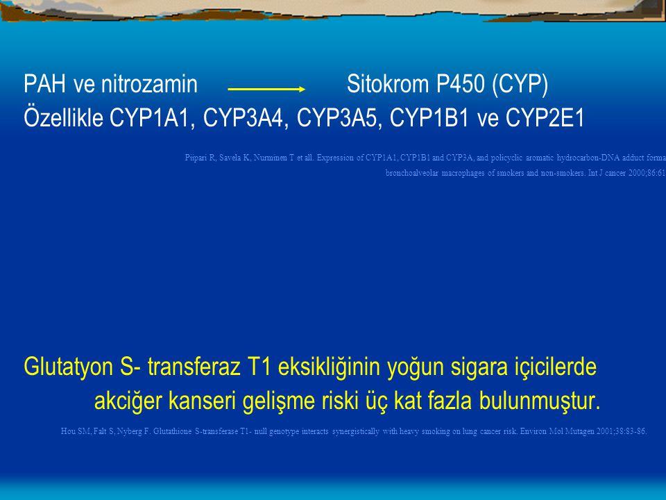 PAH ve nitrozamin Sitokrom P450 (CYP) Özellikle CYP1A1, CYP3A4, CYP3A5, CYP1B1 ve CYP2E1 Piipari R, Savela K, Nurminen T et all. Expression of CYP1A1,