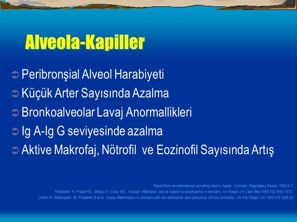 Alveola-Kapiller  Peribronşial Alveol Harabiyeti  Küçük Arter Sayısında Azalma  Bronkoalveolar Lavaj Anormallikleri  Ig A-Ig G seviyesinde azalma