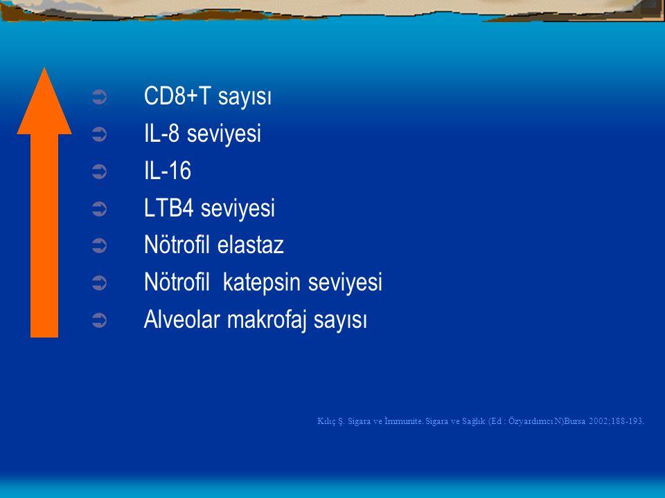  CD8+T sayısı  IL-8 seviyesi  IL-16  LTB4 seviyesi  Nötrofil elastaz  Nötrofil katepsin seviyesi  Alveolar makrofaj sayısı Kılıç Ş. Sigara ve İ