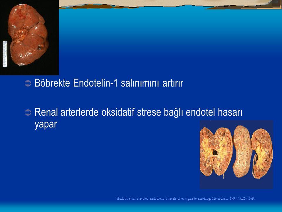  Böbrekte Endotelin-1 salınımını artırır  Renal arterlerde oksidatif strese bağlı endotel hasarı yapar Haak T, et al. Elevated endothelin-1 levels a