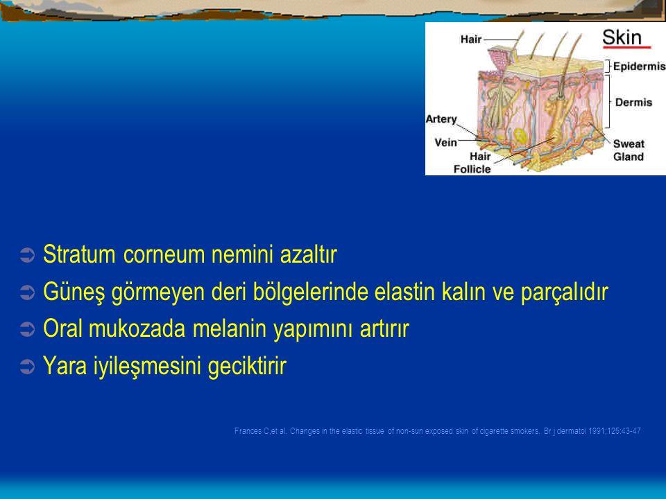  Stratum corneum nemini azaltır  Güneş görmeyen deri bölgelerinde elastin kalın ve parçalıdır  Oral mukozada melanin yapımını artırır  Yara iyileş