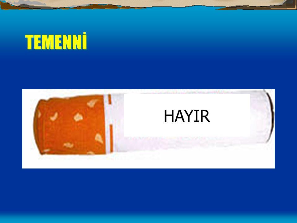 TEMENNİ HAYIR