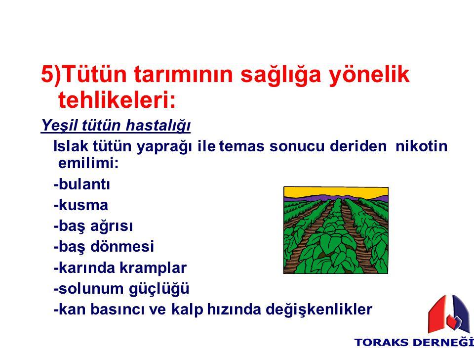 5)Tütün tarımının sağlığa yönelik tehlikeleri: Yeşil tütün hastalığı Islak tütün yaprağı ile temas sonucu deriden nikotin emilimi: -bulantı -kusma -ba