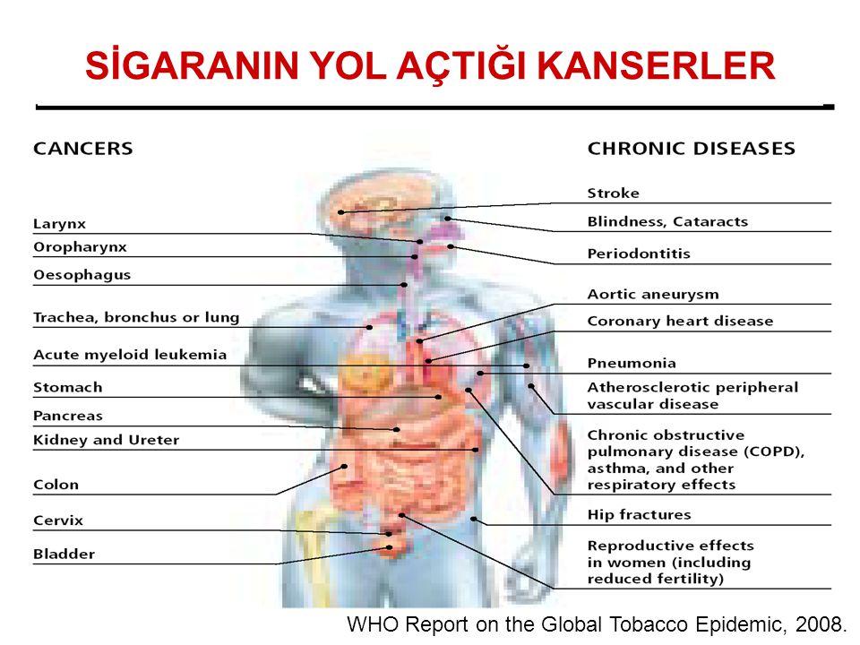 WHO Report on the Global Tobacco Epidemic, 2008. SİGARANIN YOL AÇTIĞI KANSERLER