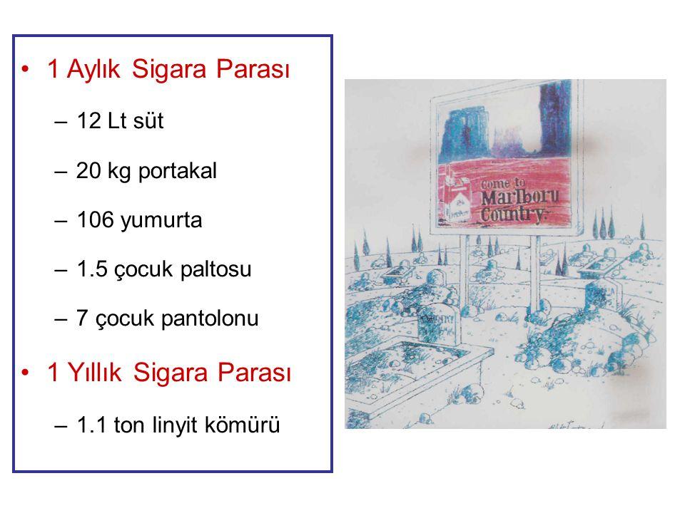 1 Aylık Sigara Parası –12 Lt süt –20 kg portakal –106 yumurta –1.5 çocuk paltosu –7 çocuk pantolonu 1 Yıllık Sigara Parası –1.1 ton linyit kömürü