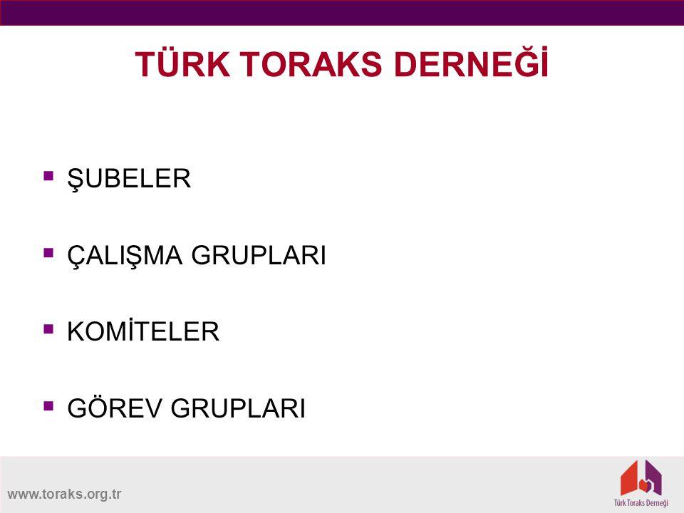 www.toraks.org.tr TÜRK TORAKS DERNEĞİ  ŞUBELER  ÇALIŞMA GRUPLARI  KOMİTELER  GÖREV GRUPLARI