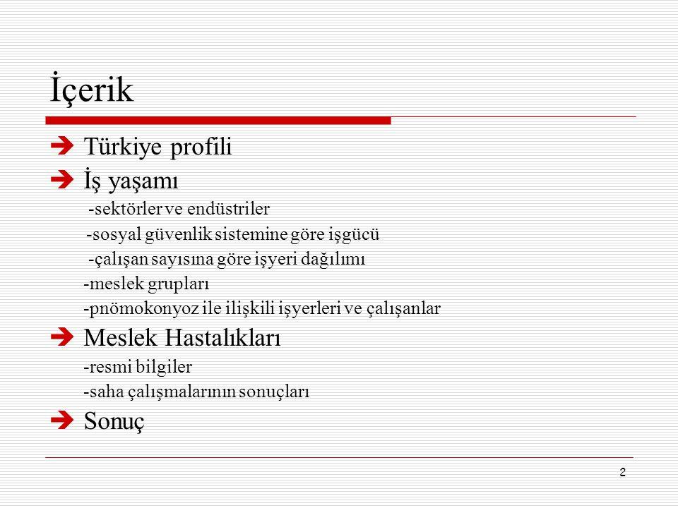 2 İçerik  Türkiye profili  İş yaşamı -sektörler ve endüstriler -sosyal güvenlik sistemine göre işgücü -çalışan sayısına göre işyeri dağılımı -meslek
