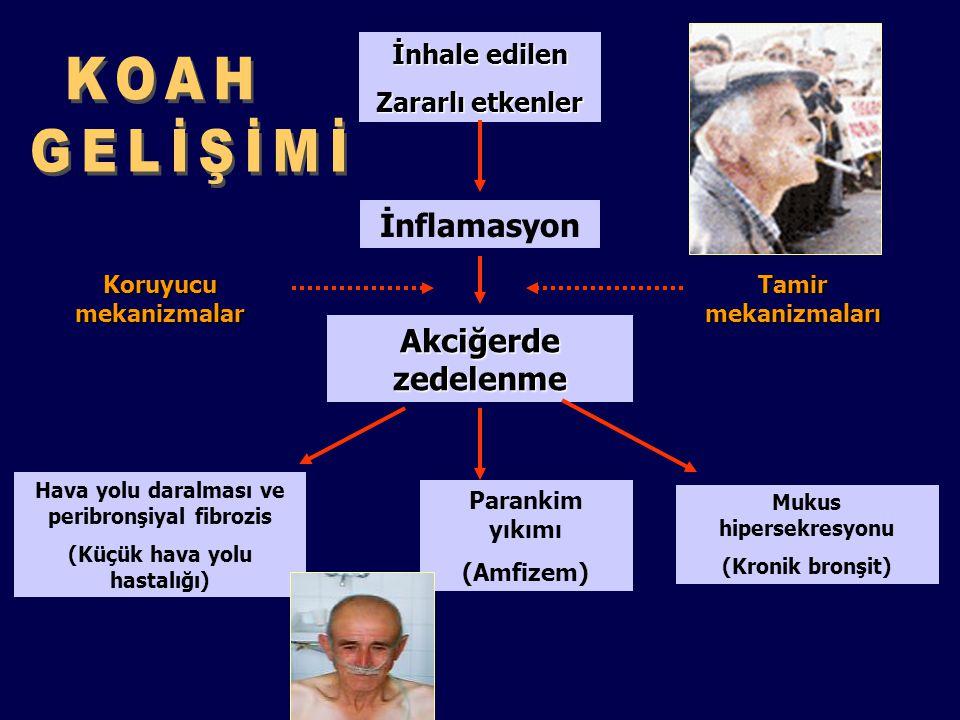 İnhale edilen Zararlı etkenler İnflamasyon Akciğerde zedelenme Hava yolu daralması ve peribronşiyal fibrozis (Küçük hava yolu hastalığı) Parankim yıkı