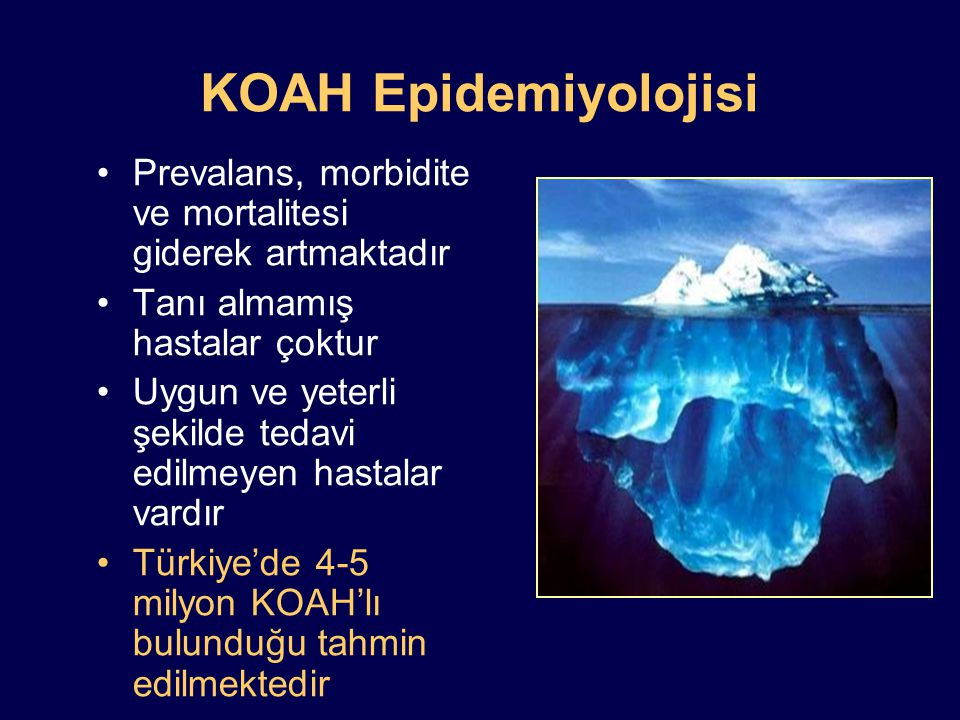 ABD'de KOAH'ın Seyri Pauwels RA and Rabe KF Lancet 2004:364:613-620