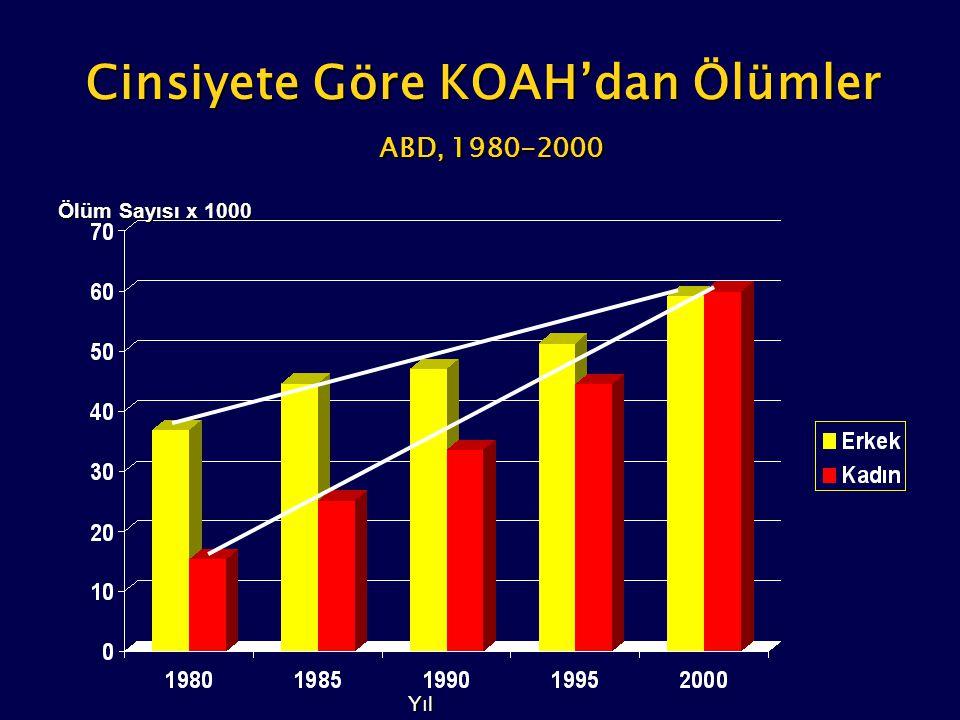 Yüz binde Taburcu Ölüm Türkiye'de 1965-1997 yılları arasında tüm hastanelere kronik bronşit, amfizem ve astım tanısı ile yatan hastaların dağılımı Yüz binde