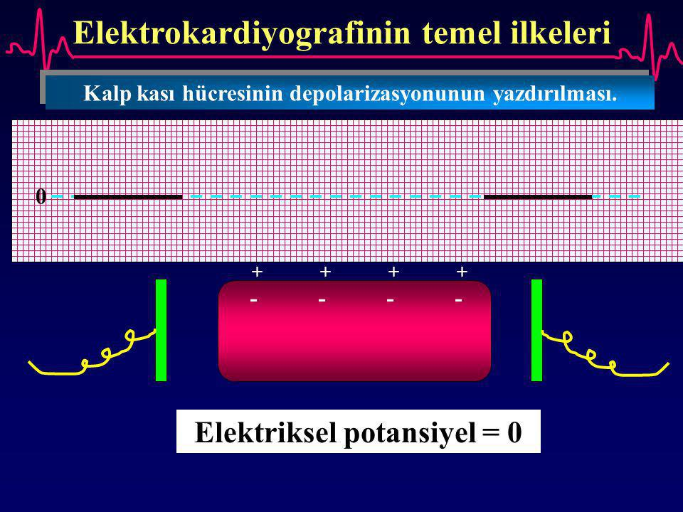 Elektrokardiyografinin temel ilkeleri Kalp kası hücresinin depolarizasyonunun yazdırılması. ++++++++ -------- Elektriksel potansiyel = 0 0