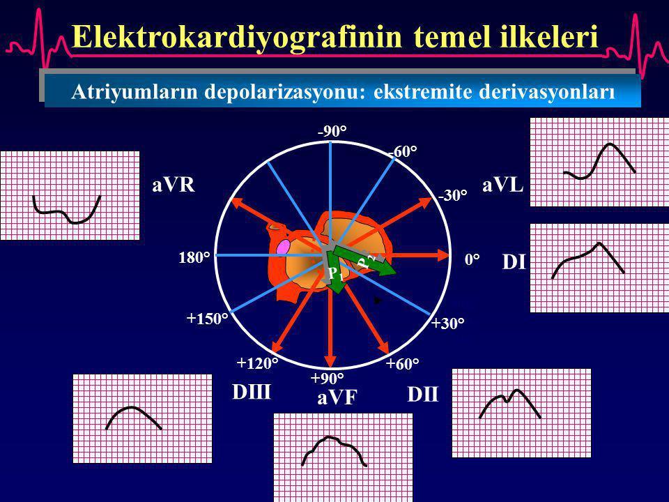 Elektrokardiyografinin temel ilkeleri Atriyumların depolarizasyonu: ekstremite derivasyonları Sağ atriy um DI aVL DII aVF DIII aVR 0° +30° +60° +90° +