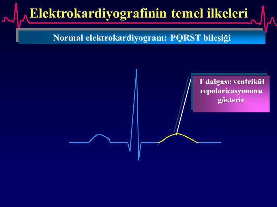 Elektrokardiyografinin temel ilkeleri Normal elektrokardiyogram: PQRST bileşiği T dalgası: ventrikül repolarizasyonunu gösterir