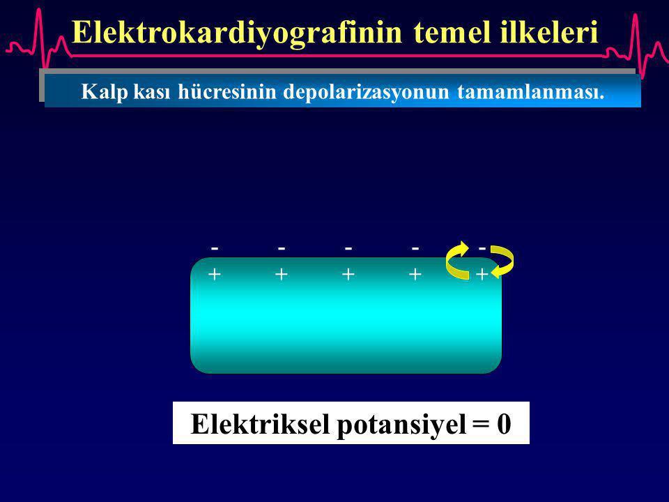 Elektrokardiyografinin temel ilkeleri Kalp kası hücresinin depolarizasyonun tamamlanması. ---------- ++++++++++ Elektriksel potansiyel = 0