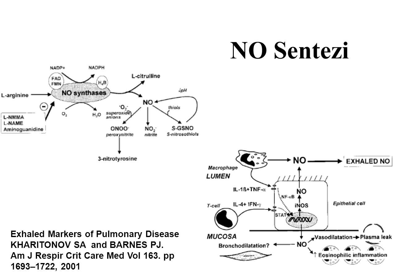 İnflamatuar barsak hastalıklarındaki (İBH) pulmoner tutulumun gösterilmesinde FENO'nun değeri 33 sigara içmeyen İBH (25 ülseratif kolit [UC] ve 8 Crohn hastalığı [CD]) - Kortikosteroid kullanmıyorlar ve 25 sağlıklı kontrol 15 hastada Pulmoner tutulum (%45.5) FENO pulmoner tutulum olanlarda 32 ± 20 ppb; tutulum olmayanlarda 14 ± 8 ppb ve sağlıklı kontrol grubunda 8 ppb (P < 0.05).
