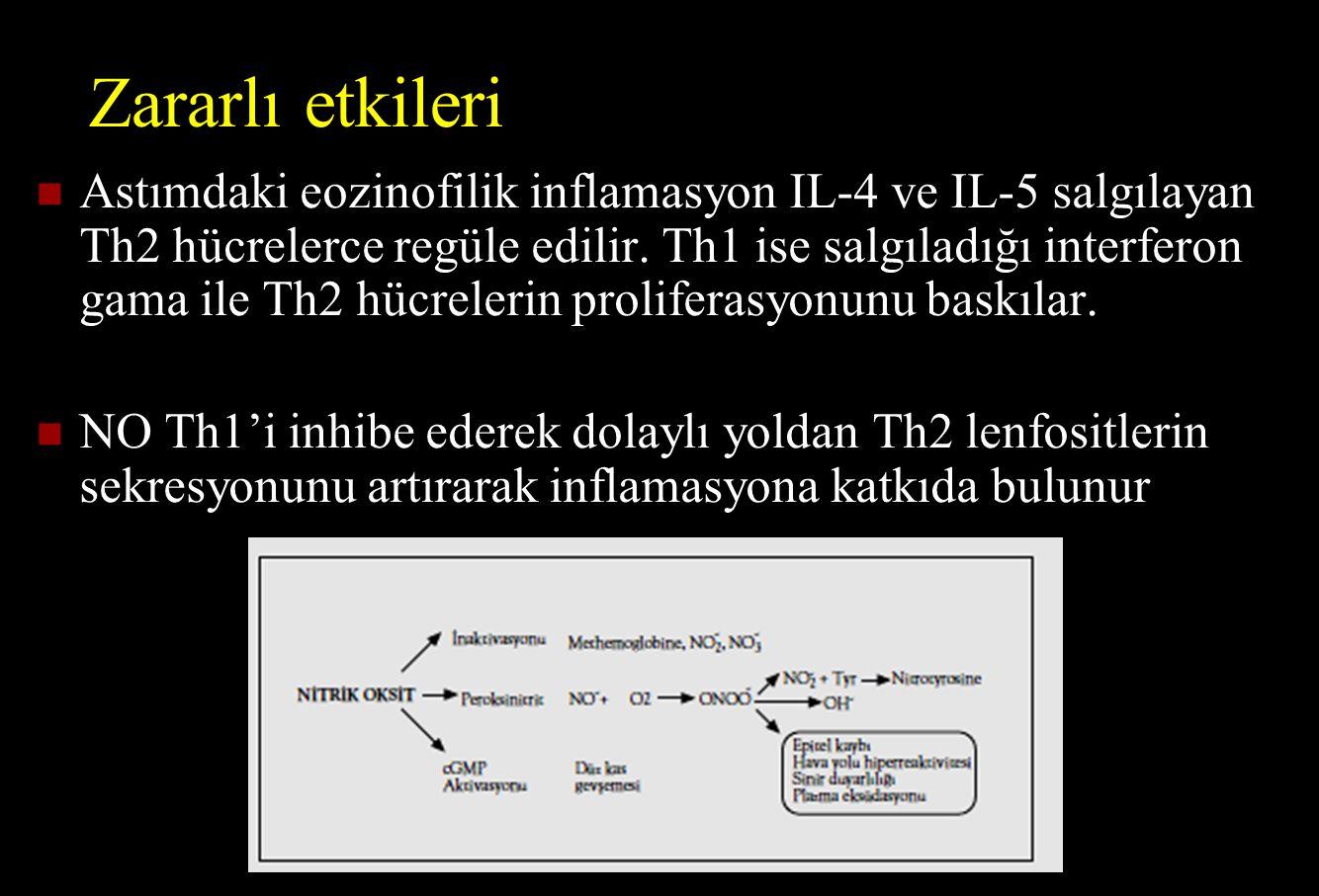 Zararlı etkileri Astımdaki eozinofilik inflamasyon IL-4 ve IL-5 salgılayan Th2 hücrelerce regüle edilir. Th1 ise salgıladığı interferon gama ile Th2 h