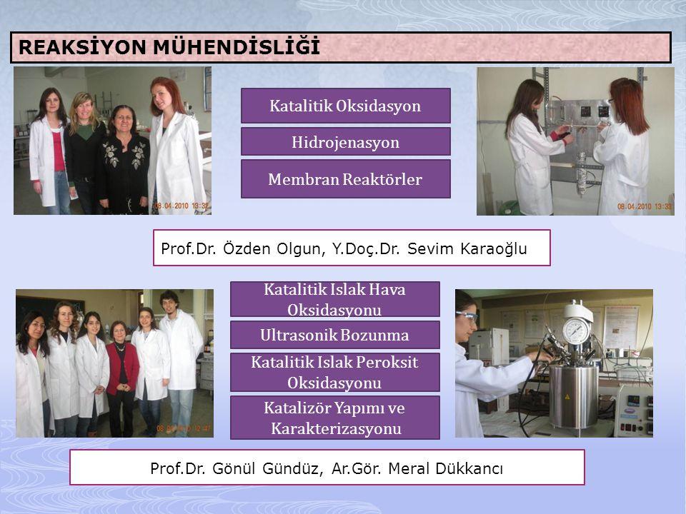 REAKSİYON MÜHENDİSLİĞİ Prof.Dr. Özden Olgun, Y.Doç.Dr. Sevim Karaoğlu Katalitik Oksidasyon Hidrojenasyon Membran Reaktörler Prof.Dr. Gönül Gündüz, Ar.