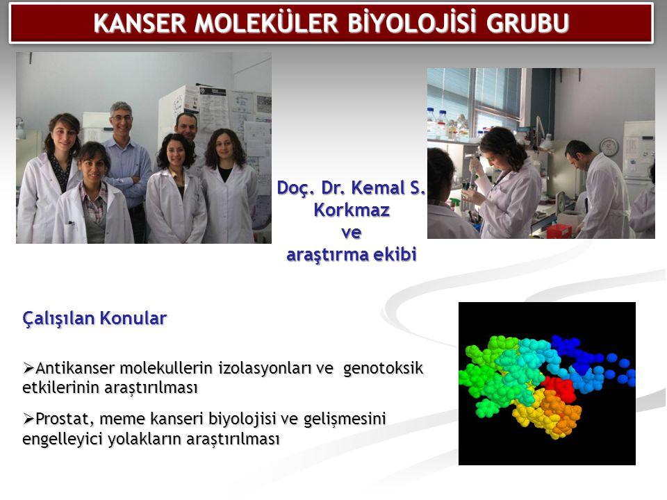 Çalışılan Konular  Antikanser molekullerin izolasyonları ve genotoksik etkilerinin araştırılması  Prostat, meme kanseri biyolojisi ve gelişmesini en