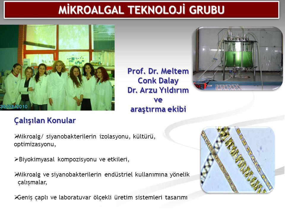 MİKROALGAL TEKNOLOJİ GRUBU Prof. Dr. Meltem Conk Dalay Dr. Arzu Yıldırım ve araştırma ekibi Çalışılan Konular  Mikroalg/ siyanobakterilerin izolasyon