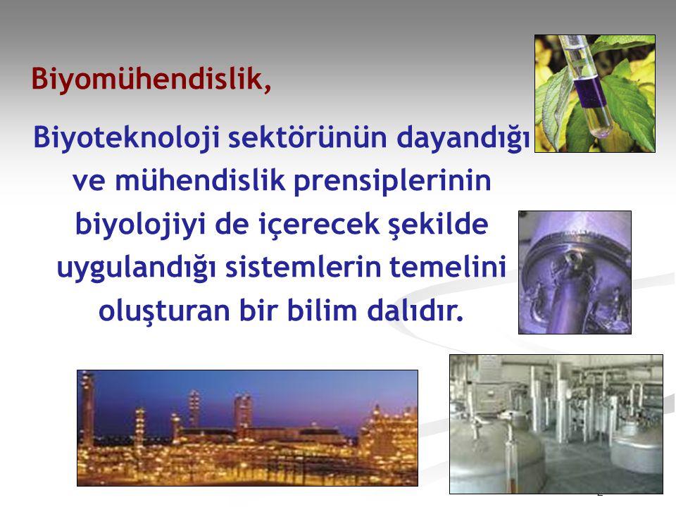 Biyomühendislik, Biyoteknoloji sektörünün dayandığı ve mühendislik prensiplerinin biyolojiyi de içerecek şekilde uygulandığı sistemlerin temelini oluşturan bir bilim dalıdır.