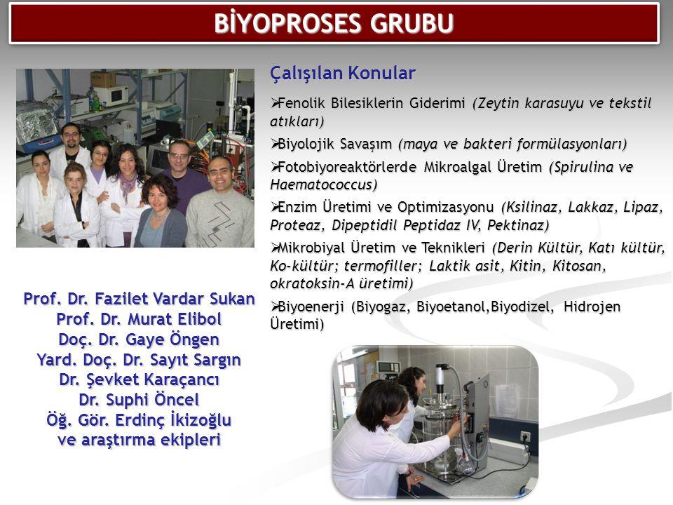 Prof. Dr. Fazilet Vardar Sukan Prof. Dr. Murat Elibol Doç. Dr. Gaye Öngen Yard. Doç. Dr. Sayıt Sargın Dr. Şevket Karaçancı Dr. Suphi Öncel Öğ. Gör. Er