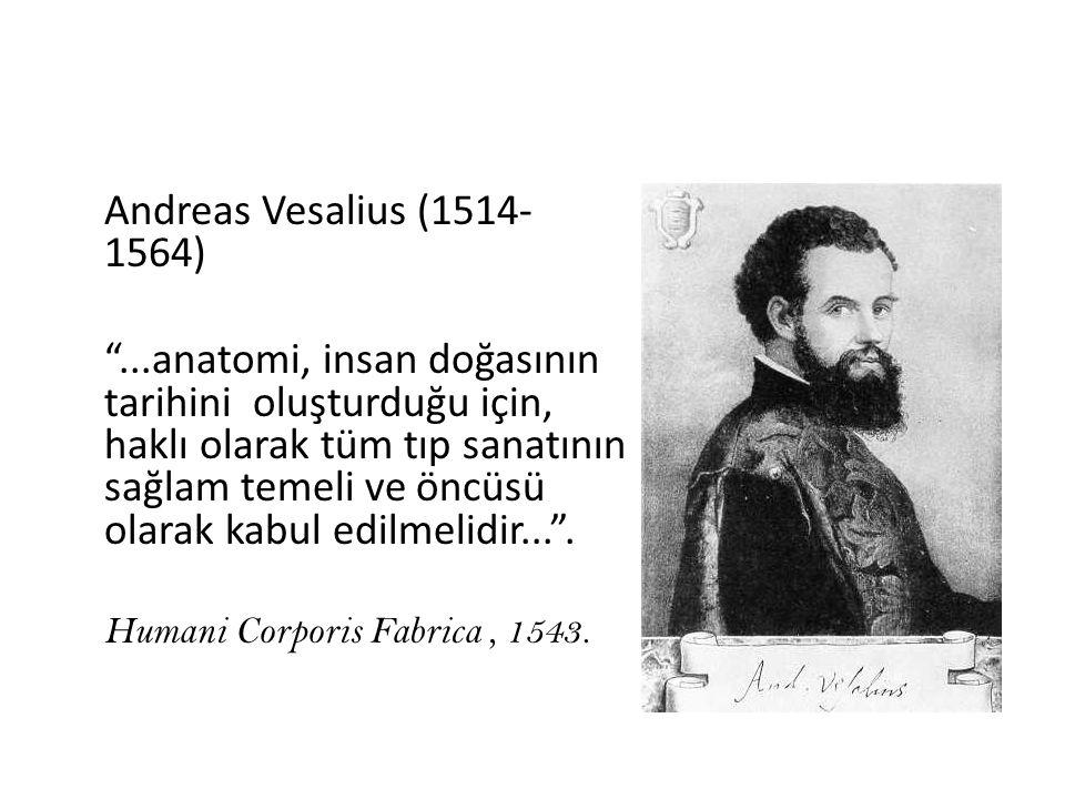 Andreas Vesalius (1514- 1564) ...anatomi, insan doğasının tarihini oluşturduğu için, haklı olarak tüm tıp sanatının sağlam temeli ve öncüsü olarak kabul edilmelidir... .