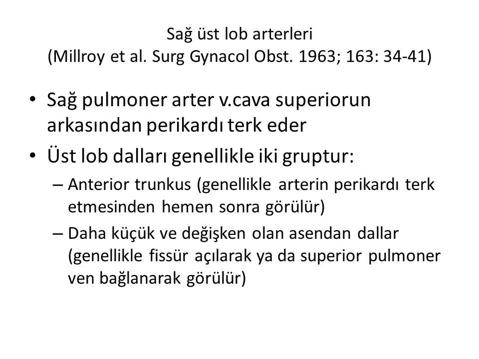 Sağ üst lob arterleri (Millroy et al.Surg Gynacol Obst.