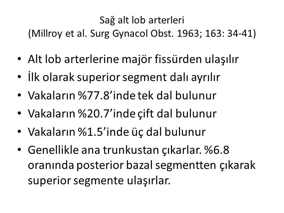 Sağ alt lob arterleri (Millroy et al.Surg Gynacol Obst.