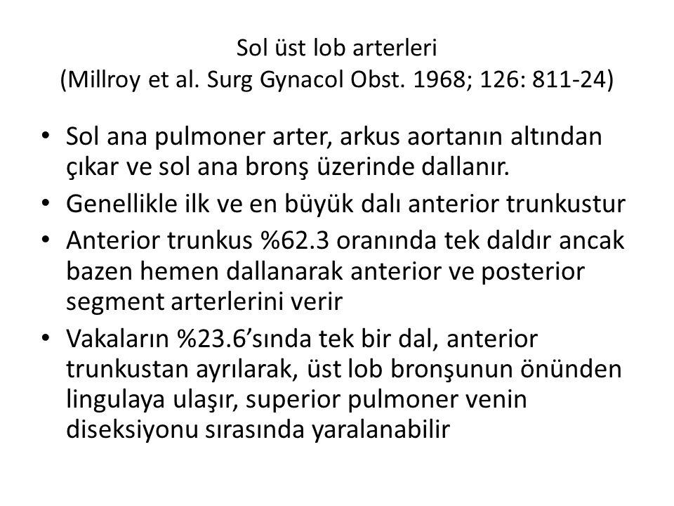Sol üst lob arterleri (Millroy et al.Surg Gynacol Obst.