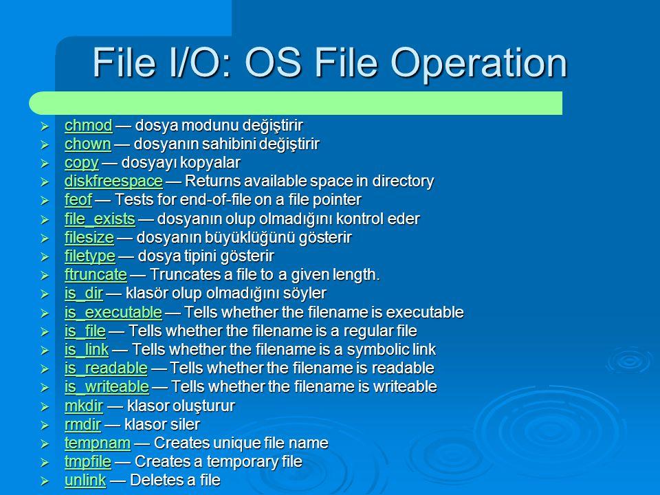 File I/O: OS File Operation  chmod — dosya modunu değiştirir chmod  chown — dosyanın sahibini değiştirir chown  copy — dosyayı kopyalar copy  disk